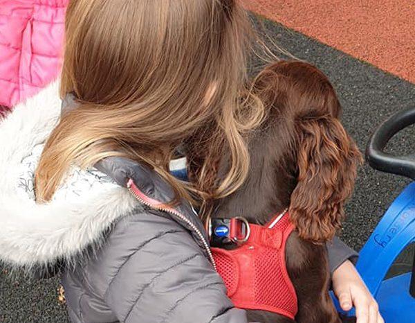 Baldersby-Park_coco-nursery-dog